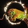 Цирки в Ясногорске